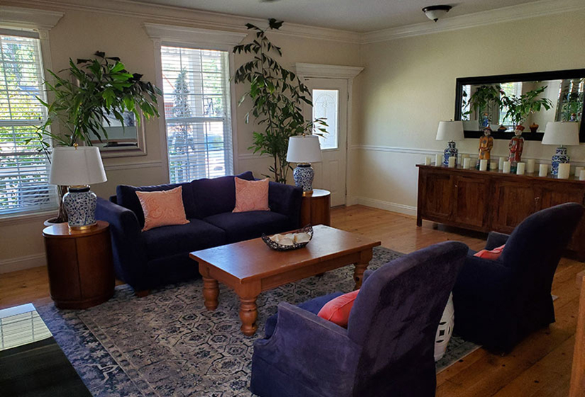 Purple furniture decorates this living area with visible entry. Dark accent dresser with mirror and indoor trees also visible.