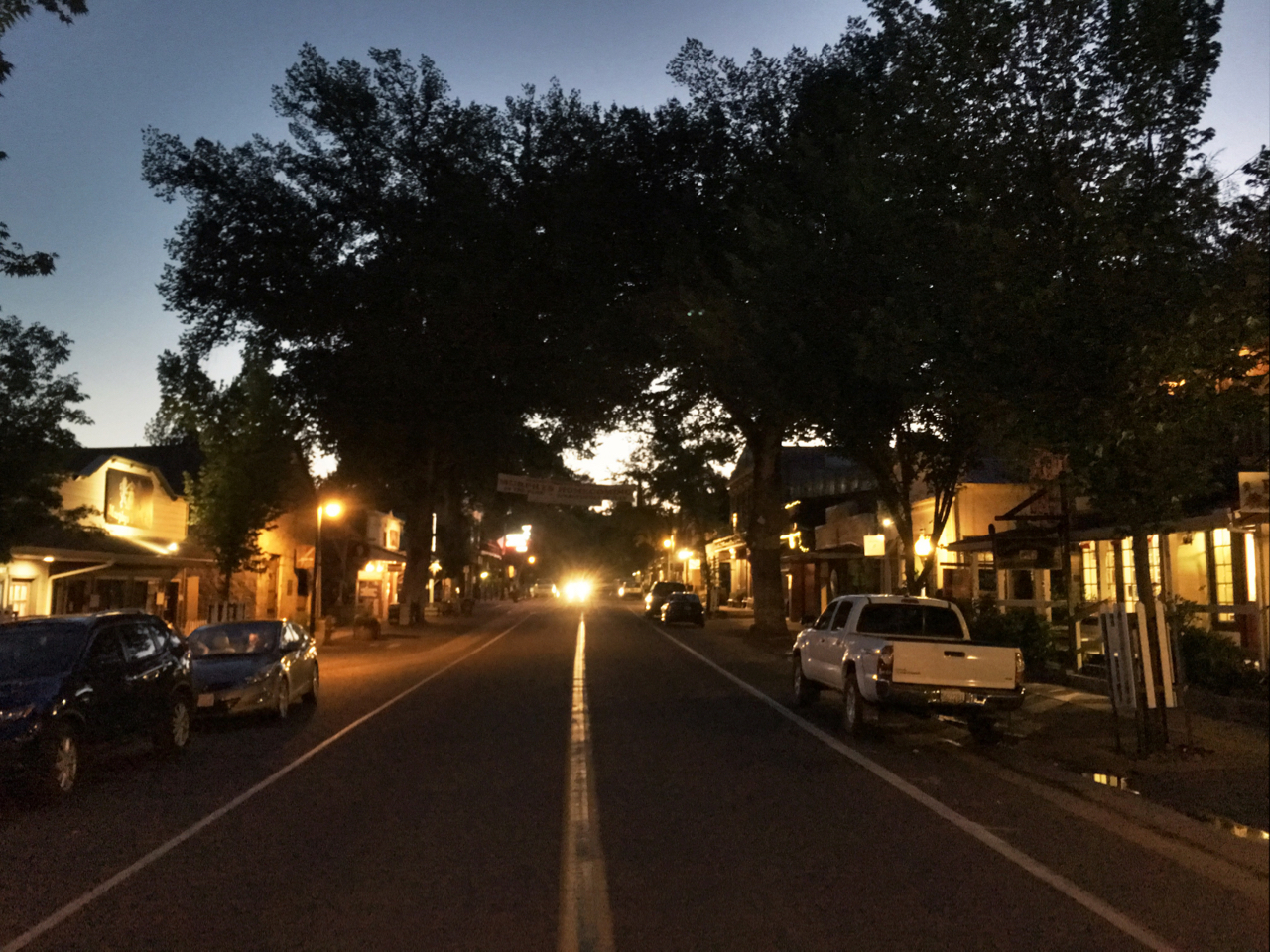 main street lined with shady trees in the sunset Murphys California