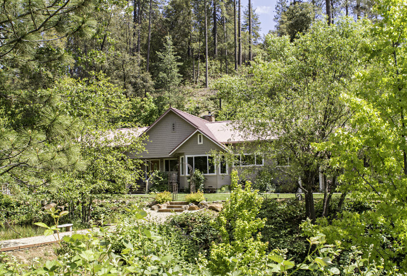 Exterior view of tan cottage with gable roof completely surrounded by a variety of lush green plants and trees